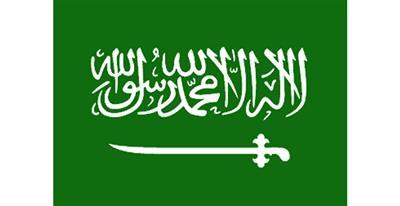 «السعوديات».. أغنى نساء الخليج