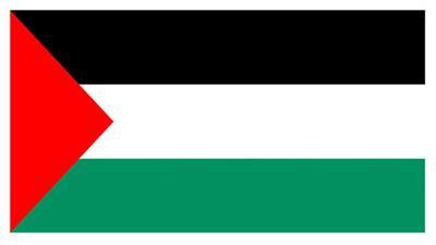 مقتل فتى فلسطيني برصاص إسرائيلي في غزة