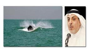 وليد الفاضل- أحد الحيتان التي تم رصدها في جون الكويت وقد بدت بصحة جيدة