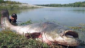 بالصور - رجل يصطاد سمكة وزنها 120 كيلوغراما
