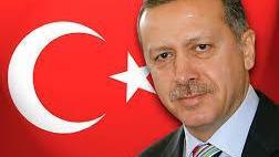 الرئيس التركي: رجب طيب أردوغان