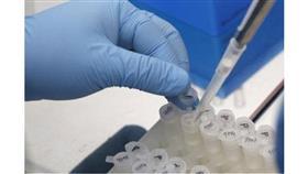 لأول مرة.. تطوير أجنة بشرية خارج الرحم لمدة 13 يوما