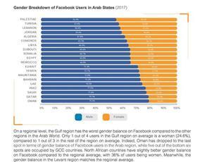 الكويتيات في المرتبة 12 عربياً باستخدام «فيس بوك»