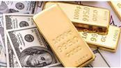 الدولار يتعافى ويبدد مكاسب الذهب