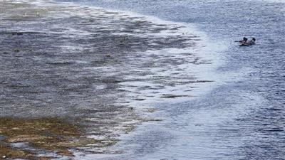 ظهور «جزر نيلية» في مصر.. ووزير الري يكشف مكان تخزين المياه