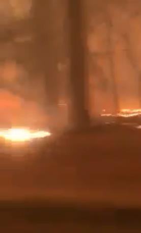 حرائق في كاليفورنيا تجبر آلاف السكان على الهروب