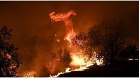 ارتفاع عدد ضحايا حرائق كاليفورنيا إلى 9 قتلى