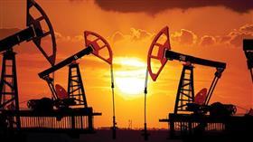 النفط يتراجع مع ارتفاع مخزون أمريكا