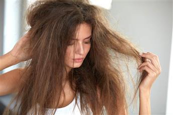 الزيوت المناسبة لحماية الشعر من التلف