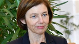 تنسيقات لتزويد المؤسسة العسكرية بأسلحة ومعدات فرنسية
