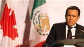 وزير الاقتصاد المكسيكي إلديفونسو جواجاردو