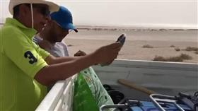 «البيئة»: إعادة تأهيل المناطق الساحلية لدولة الكويت