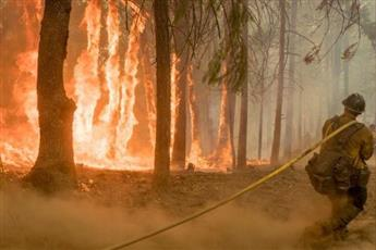 ارتفاع عدد ضحايا حرائق كاليفورنيا إلى 8 قتلى