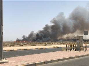 «الإطفاء»: السيطرة على حريق أشجار خلف نادي الصليبيخات