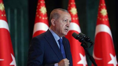 أردوغان يدعو إلى التعامل بالعملات المحلية بدلا عن الدولار