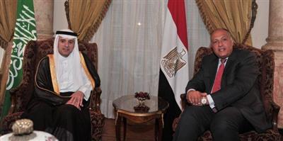مشاورات مصرية سعودية حول إدلب واتفاق على أهمية التعجيل بالحل السياسي