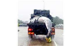 الجيش البريطاني يساعد في نقل حوت ضخم