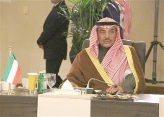 وزير الخارجية يشارك في اللقاء الوزاري التشاوري بالأردن