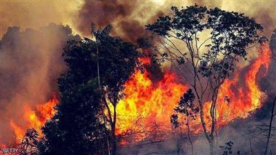 تراجع حدة الحرائق في لبنان مع هطول الأمطار