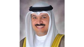 الدكتور محمد الهاشل