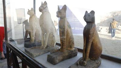 مصر تكشف عن متحف كامل يضم مومياوات أسود وتماسيح وطيور