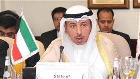 مساعد وزير الخارجية لشؤون المنظمات الدولية ناصر الهين