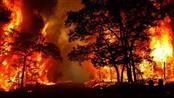 إسبانيا تواصل العمل للسيطرة على حرائق متفرقة بالغابات شمالي البلاد