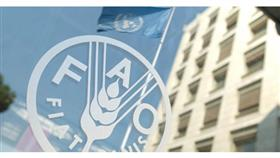 منظمة الأغذية والزراعة التابعة للأمم المتحدة (فاو)