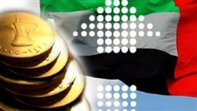 المركزي الإماراتي يتوقع نمو الاقتصاد 2.5 % في 2019