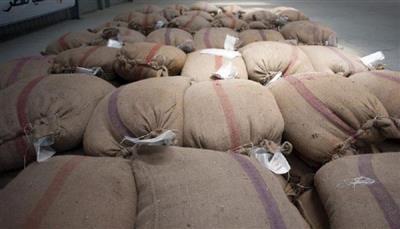 مصر تشتري 385 ألفًا و615 طنًا من القمح المحلي منذ بداية الموسم