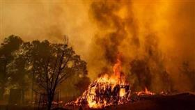موجة حارة في النمسا وتحذيرات من اتساع رقعة حرائق الغابات وزيادة الجفاف