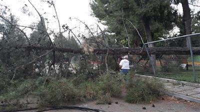 مصرع 6 أجانب جراء الطقس السيء في اليونان