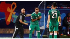 مدرب الجزائر: جاهزون لمواجهة نيجيريا في نصف نهائي «أمم إفريقيا»