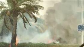 إخماد حريق أشجار في قرطبة.. امتد إلى 50 مترًا