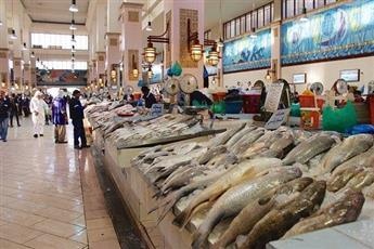 «حماية المنافسة» يحقق في ممارسات مزادات سوق السمك
