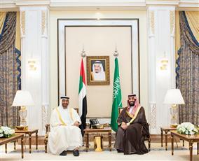 محمد بن زايد: الإمارات والسعودية في خندق واحد