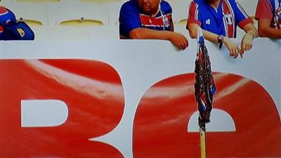 أسراب نحل تقتحم ملعب مباراة في الدوري البرازيلي