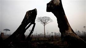 البرازيل: أمريكا لا تقدم مساعدة ملموسة لمكافحة حرائق الأمازون