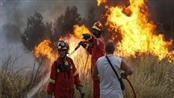 البرازيل: حرائق الأمازون.. تحت السيطرة