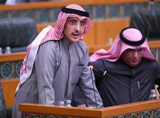 وزير الخارجية أثناء مداخلته في جلسة اليوم
