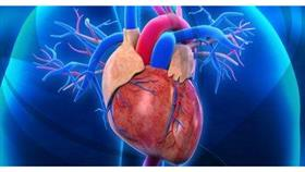 دراسة: مشاكل الحمل تزيد فرص الإصابة بأمراض القلب