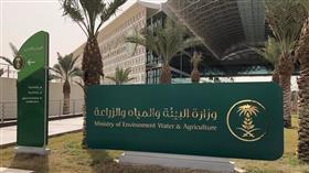 السعودية تطلق حملة لنجعلها خضراء لغرس 10 ملايين شجرة