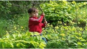 لعب الأطفال في الطبيعة يعزز مناعتهم