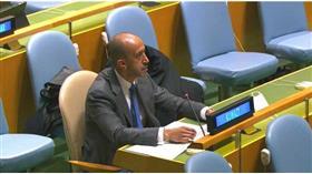 الكويت: تمثيل عربي للمقاعد الدائمة لمجلس الأمن