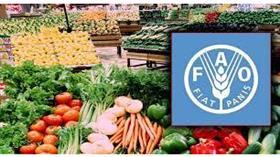 أسعار الغذاء العالمية تبلغ أعلى مستوى في 6 سنوات