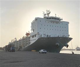 «المواشي»: وصول سفينتنا الجديدة «الكويت» الأكبر عالمياً.. محملة بـ28 ألف غنم و100 عجل