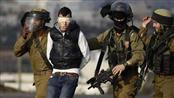 الاحتلال الإسرائيلي يعتقل 23 فلسطينيًا من الضفة الغربية