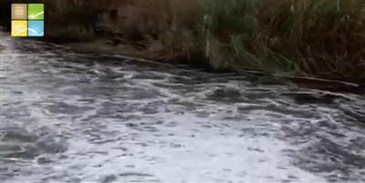 هيئة البيئة: مخرج الصرف الصحي يقع في منطقة الدوحه الساحلية.. وليس الجهراء